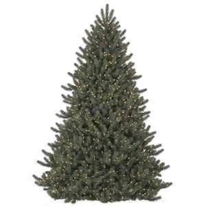 6.5Ft. Pre Lit Clear Oregon Pine Christmas Tree