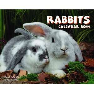 2011 Animal Calendars Rabbits   12 Month   24.8x19.7cm